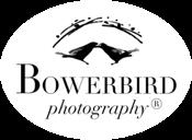 Bowerbird Photography logo